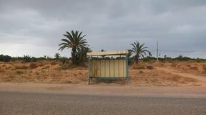 tunesien_kerkennah-2